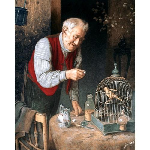 پیرمرد و طوطی